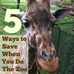 Ways to Save at the Zoo