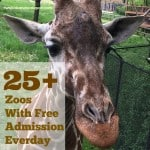 Zoos With Free Admission