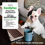 Do You Have the Cutest Dog?  Enter the Family Fun Cute Dog Contest