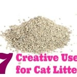 Uses for Kitty Litter