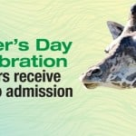 Free Zoo Admission for Father's Day