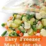 Easy Freezer Crockpot Meals