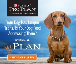 Save $5 on Purina Dog Food