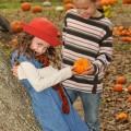 Boy giving girl a pumpkin in pumpkin patch in the fall