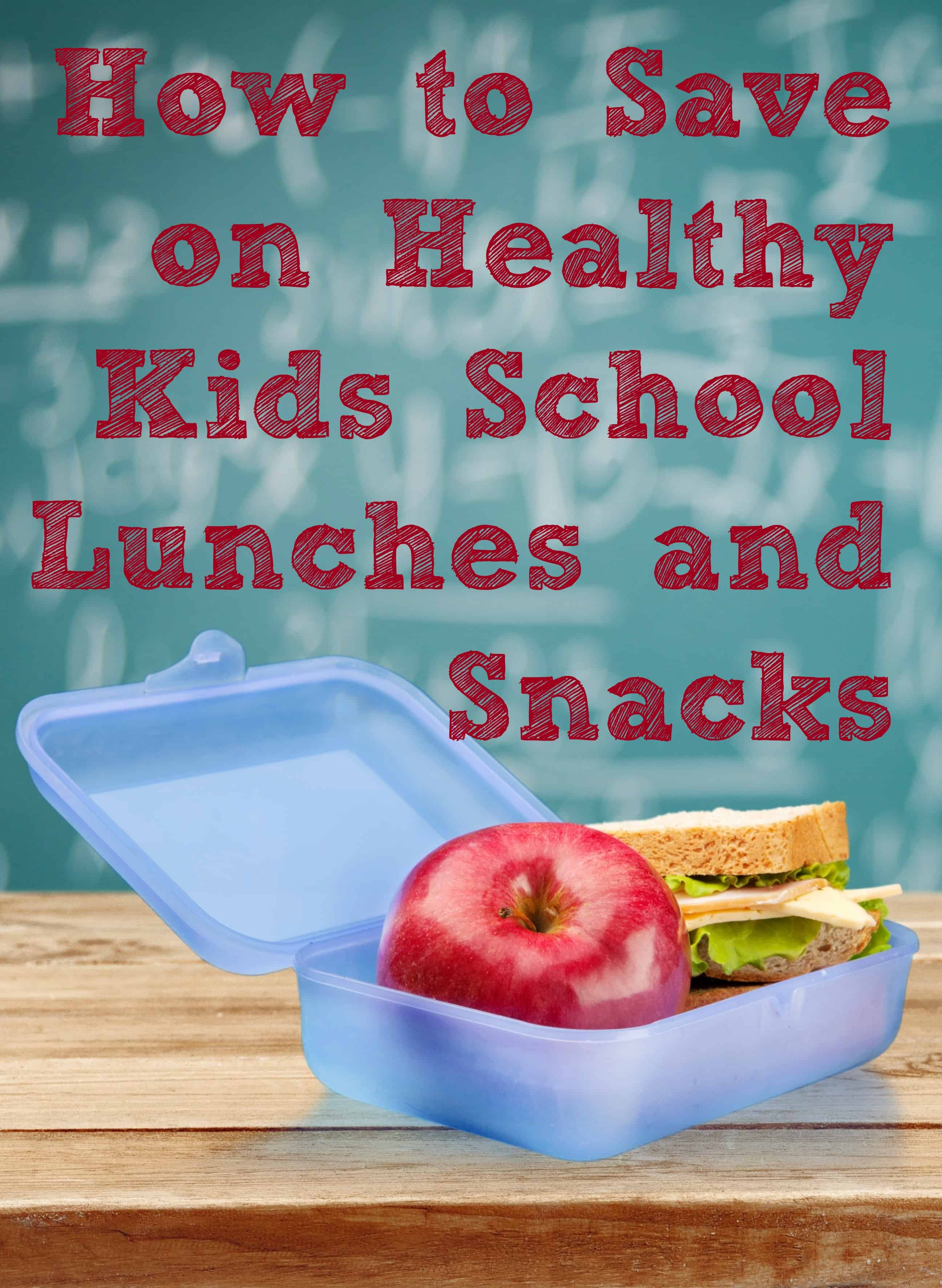 Lunch Box. School lunch